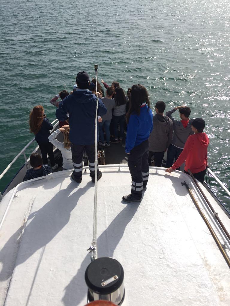 Progetto Scuole -avvistamento cetacei